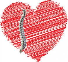 love-chiropractors-image-92kb